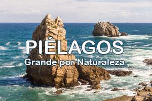 Piélagos